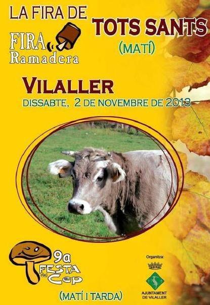 Festa del cep Vilaller 2013