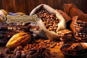 Taller de Xocolata al Monestir