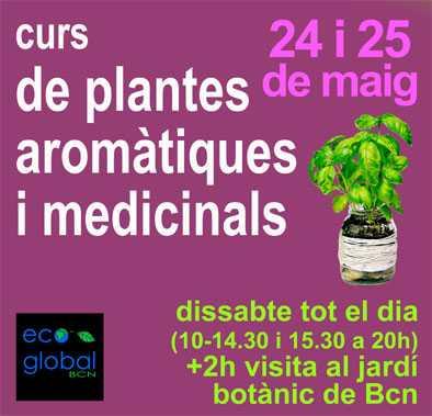 curs plantes Mai 2014