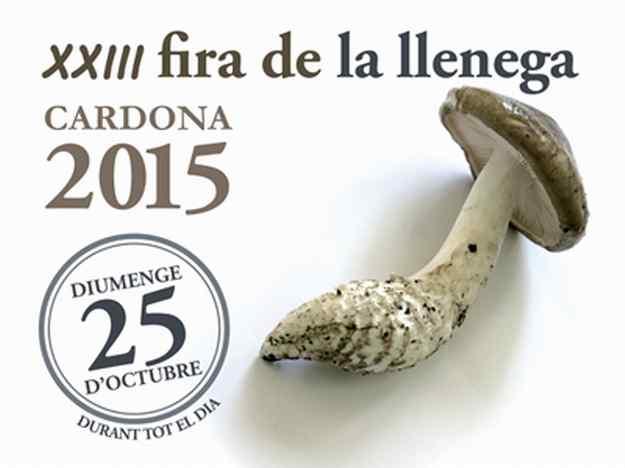 XXIIIa Fira de la Llenega Cardona 2015