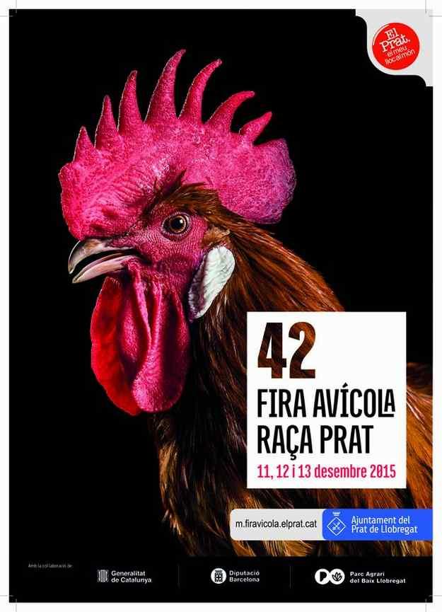 42a Fira Avícola de la Raça Prat – El Prat de Llobregat
