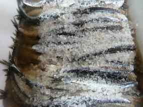 Anxoves amb sal 01