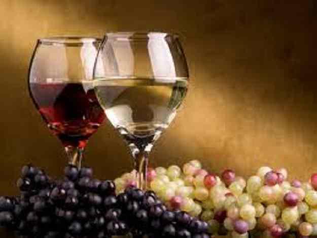 El vi