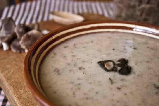 Sopa de fredolics