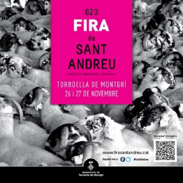 623a-edicio-fira-de-sant-andreu-torroella-de-montgri-2016