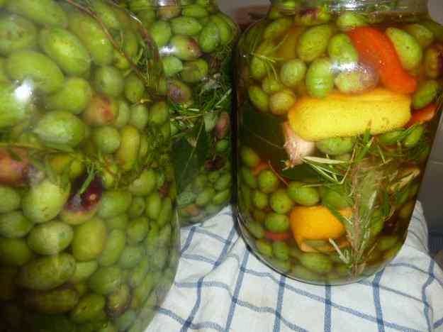 Conserva d'olives verdes